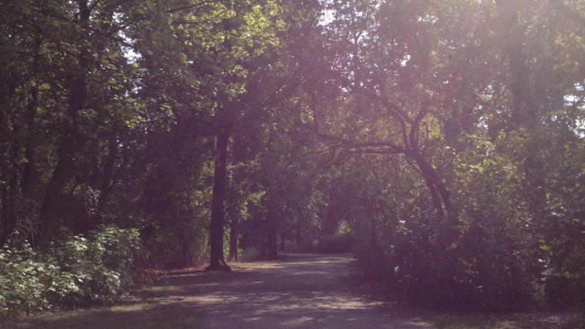 Park, Spaziergang
